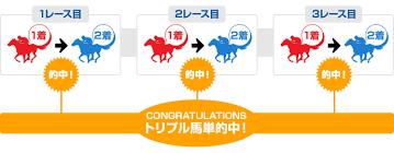 SPAT4LOTO トリプル馬単とは?|南関東4競馬場|nankankeiba.com